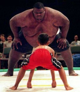 David and Goliath - the Sumo Wrestling match